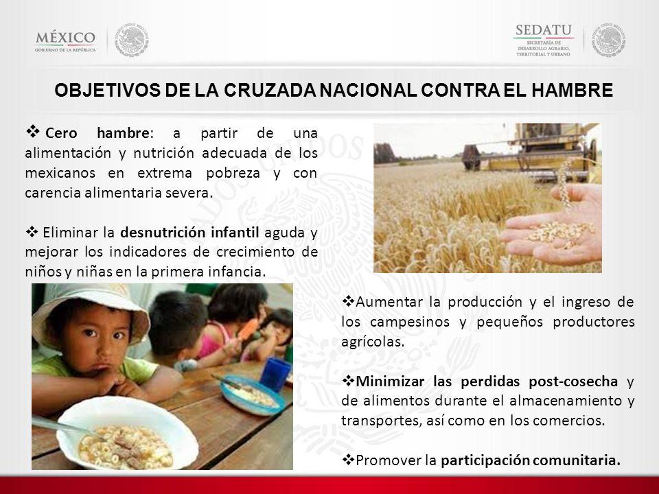 OBJETIVOS DE LA CRUZADA NACIONAL CONTRA EL HAMBRE Cero hambre: a partir de una alimentación y nutrición adecuada de los mexicanos en extrema pobreza y con carencia alimentaria severa.