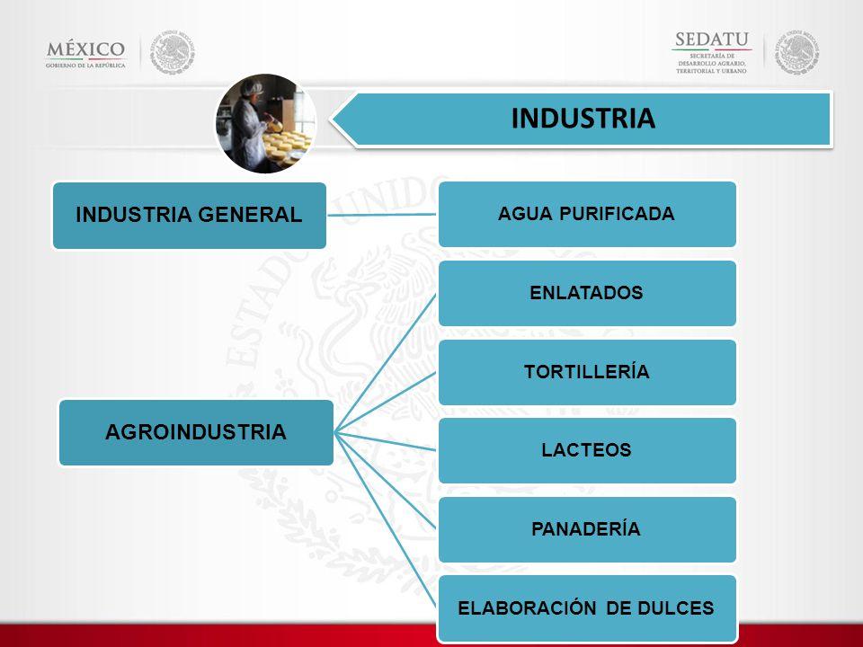 INDUSTRIA GENERAL AGUA PURIFICADA AGROINDUSTRIA ENLATADOSTORTILLERÍALACTEOSPANADERÍAELABORACIÓN DE DULCES INDUSTRIA