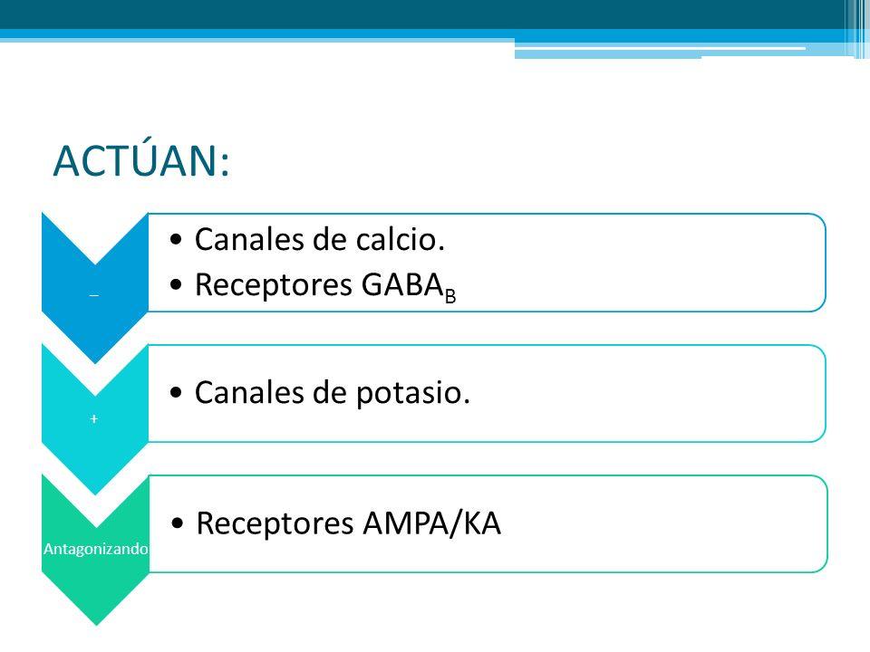 ACTÚAN: _ Canales de calcio. Receptores GABA B + Canales de potasio. Antagonizando Receptores AMPA/KA