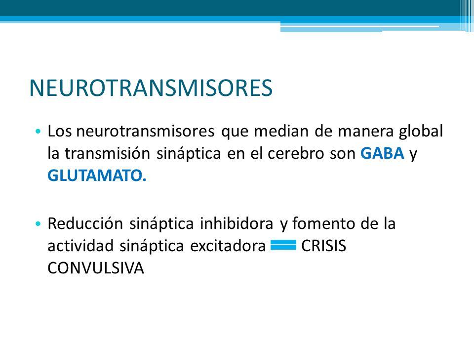 NEUROTRANSMISORES Los neurotransmisores que median de manera global la transmisión sináptica en el cerebro son GABA y GLUTAMATO. Reducción sináptica i