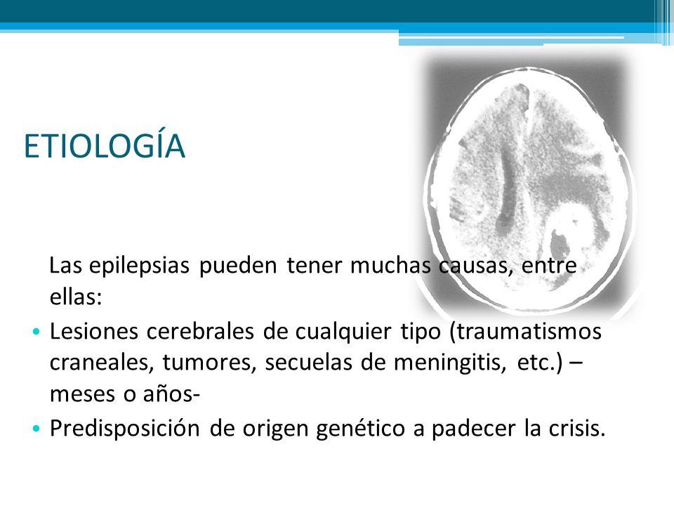 ETIOLOGÍA Las epilepsias pueden tener muchas causas, entre ellas: Lesiones cerebrales de cualquier tipo (traumatismos craneales, tumores, secuelas de