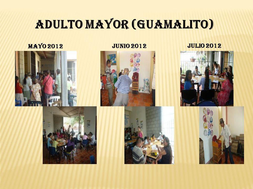 ADULTO MAYOR (Guamalito) MAYO 2012 JUNIO 2012 JULIO 2012