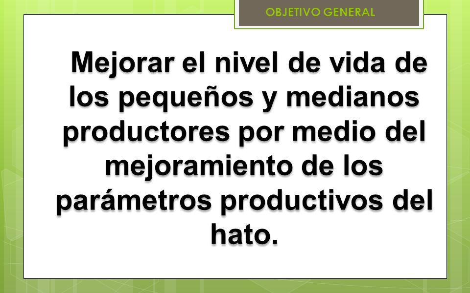 OBJETIVO GENERAL Mejorar el nivel de vida de los pequeños y medianos productores por medio del mejoramiento de los parámetros productivos del hato.