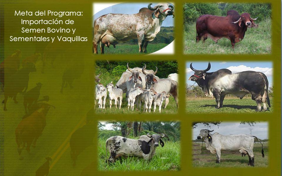 Meta del Programa: Importación de Semen Bovino y Sementales y Vaquillas