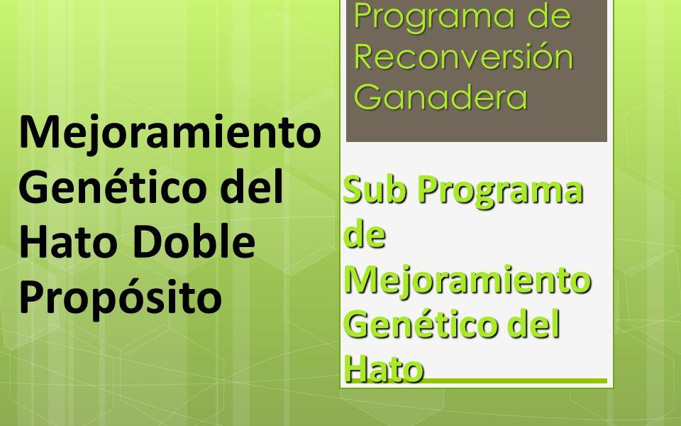 Programa de Reconversión Ganadera Sub Programa de Mejoramiento Genético del Hato Mejoramiento Genético del Hato Doble Propósito