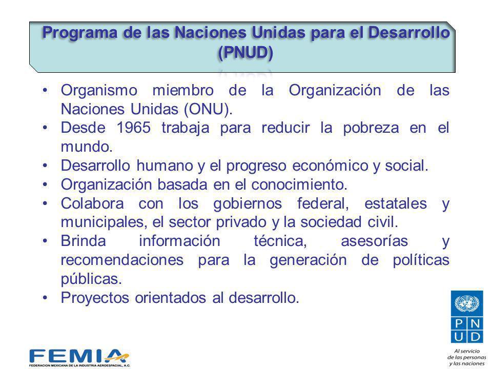 Organismo miembro de la Organización de las Naciones Unidas (ONU).