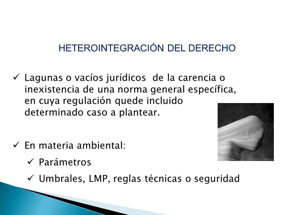 Lagunas o vacíos jurídicos de la carencia o inexistencia de una norma general específica, en cuya regulación quede incluido determinado caso a plantea