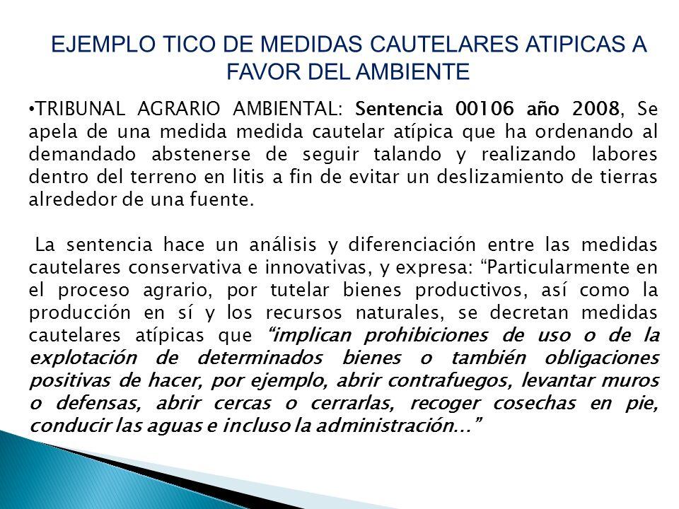 TRIBUNAL AGRARIO AMBIENTAL: Sentencia 00106 año 2008, Se apela de una medida medida cautelar atípica que ha ordenando al demandado abstenerse de segui