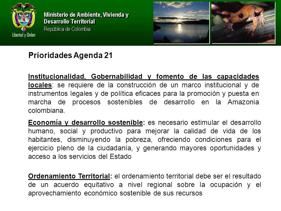 Prioridades Agenda 21 Institucionalidad, Gobernabilidad y fomento de las capacidades locales: se requiere de la construcción de un marco institucional y de instrumentos legales y de política eficaces para la promoción y puesta en marcha de procesos sostenibles de desarrollo en la Amazonia colombiana.