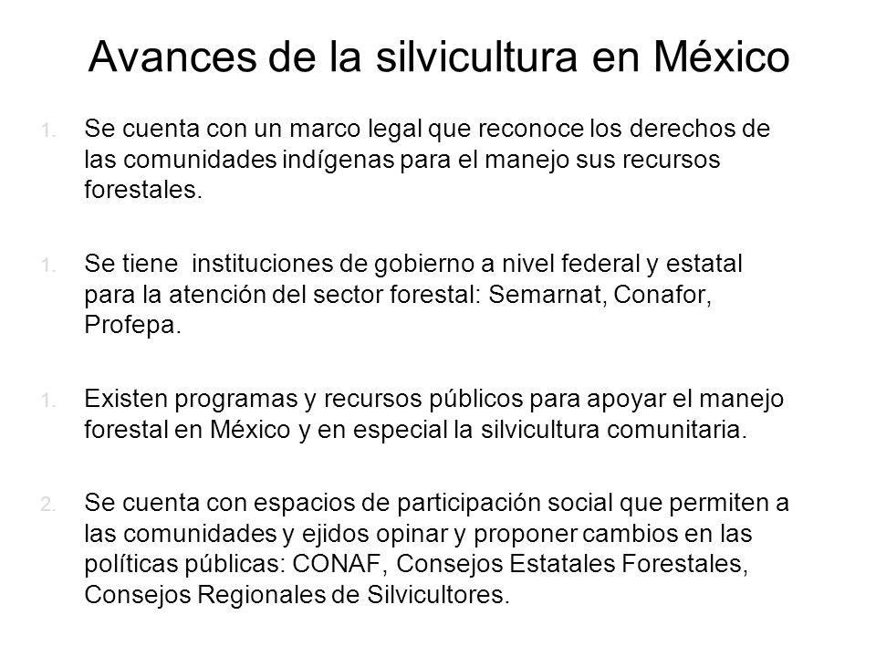 Avances de la silvicultura en México 1. Se cuenta con un marco legal que reconoce los derechos de las comunidades indígenas para el manejo sus recurso