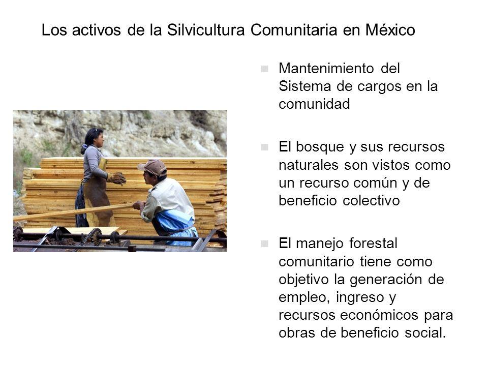 Los activos de la Silvicultura Comunitaria en México Mantenimiento del Sistema de cargos en la comunidad El bosque y sus recursos naturales son vistos
