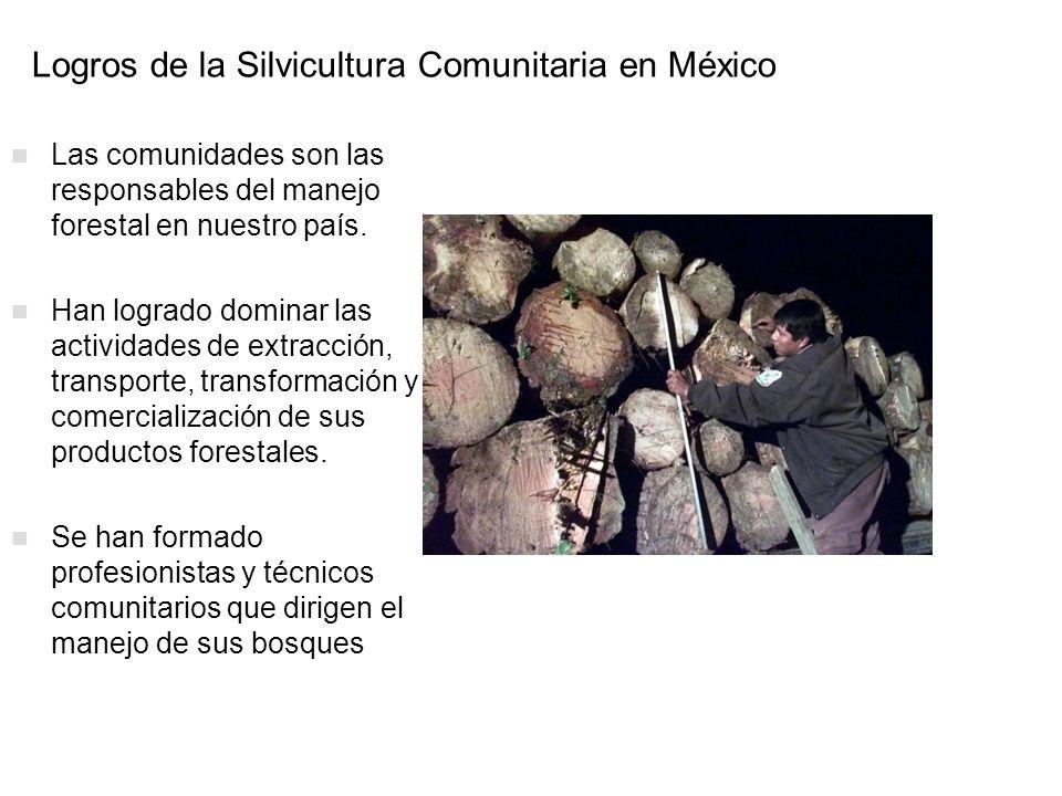 Logros de la Silvicultura Comunitaria en México Las comunidades son las responsables del manejo forestal en nuestro país. Han logrado dominar las acti