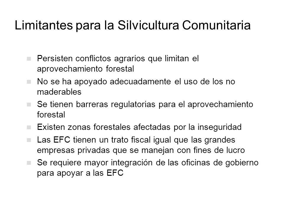 Limitantes para la Silvicultura Comunitaria Persisten conflictos agrarios que limitan el aprovechamiento forestal No se ha apoyado adecuadamente el us