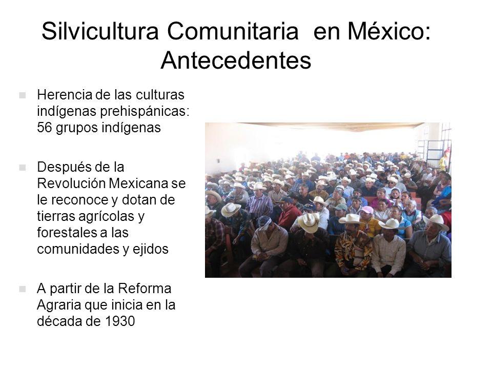 Silvicultura Comunitaria en México: Antecedentes Herencia de las culturas indígenas prehispánicas: 56 grupos indígenas Después de la Revolución Mexica