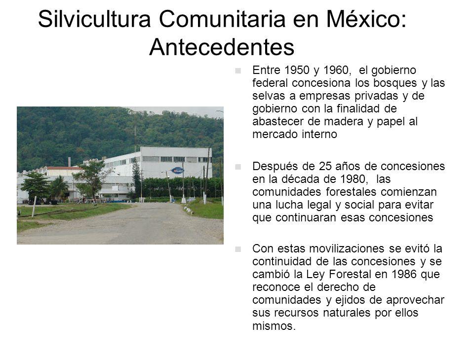 Silvicultura Comunitaria en México: Antecedentes En esta época (1983-1988) da inicio un Programa de Gobierno para apoyar la organización de Empresas Forestales Comunitarias (EFC) Se crean así las primeras EFC y se permite que estas tengan el derecho de contratar sus servicios técnicos forestales En 1995 se crea la Semarnap, y surgen los programas de apoyo para apoyar a los dueños de los bosques: PRODEFOR, PROCYMAF, PRODEPLAN