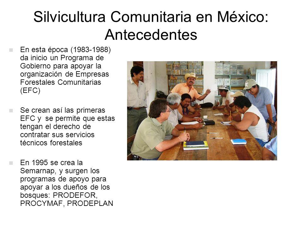 Silvicultura Comunitaria en México: Antecedentes En esta época (1983-1988) da inicio un Programa de Gobierno para apoyar la organización de Empresas F
