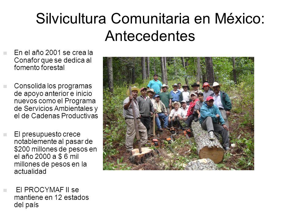 Silvicultura Comunitaria en México Mas de 15 mil ejidos y comunidades con 200 Ha o mas de cobertura forestal El 50% de los bosque y selvas son de ejidos y comunidades Existen 2,300 comunidades y ejidos realizan aprovechamientos forestales legales.