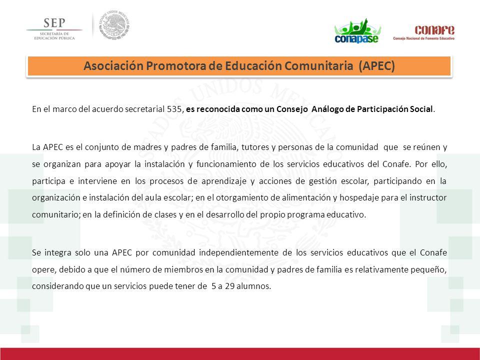 En el marco del acuerdo secretarial 535, es reconocida como un Consejo Análogo de Participación Social. La APEC es el conjunto de madres y padres de f
