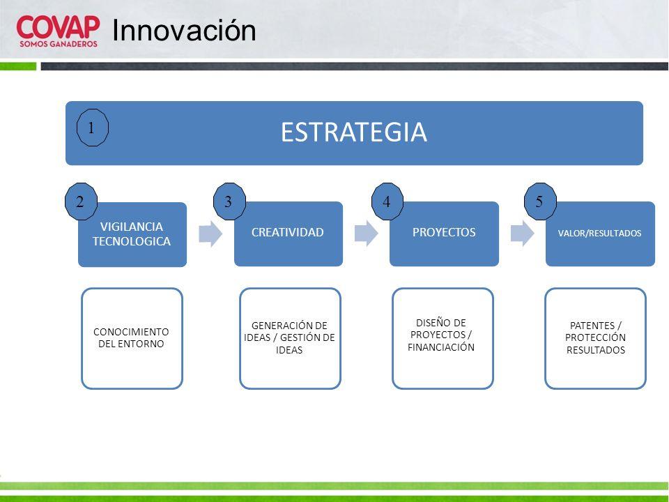 VIGILANCIA TECNOLOGICA CREATIVIDADPROYECTOS VALOR/RESULTADOS CONOCIMIENTO DEL ENTORNO ESTRATEGIA GENERACIÓN DE IDEAS / GESTIÓN DE IDEAS DISEÑO DE PROY