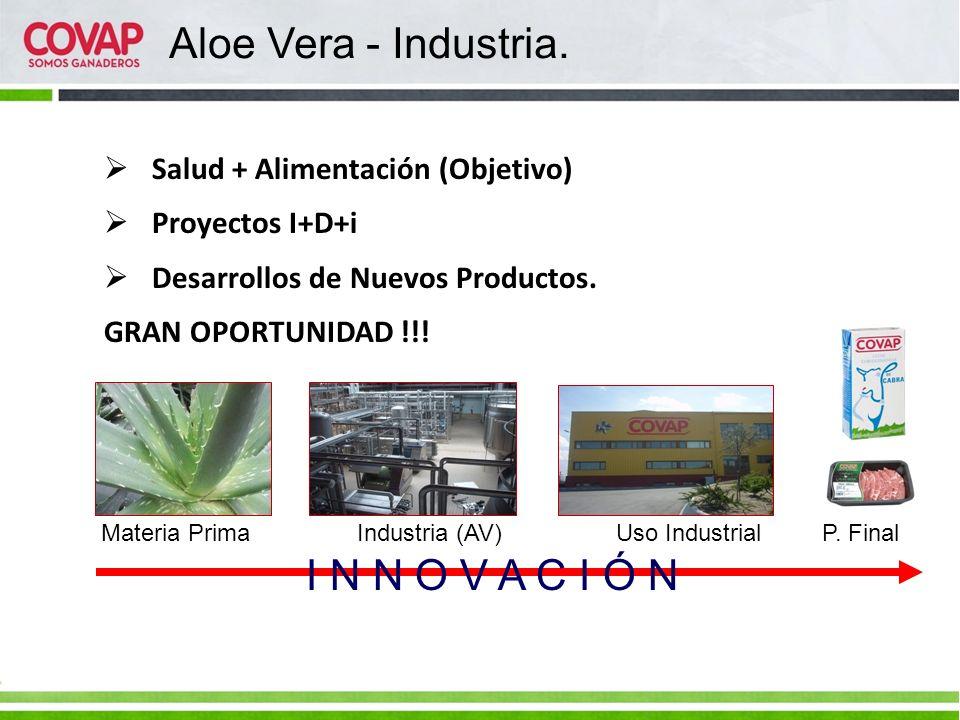 Materia Prima Industria (AV) Uso Industrial P. Final I N N O V A C I Ó N Aloe Vera - Industria. Salud + Alimentación (Objetivo) Proyectos I+D+i Desarr