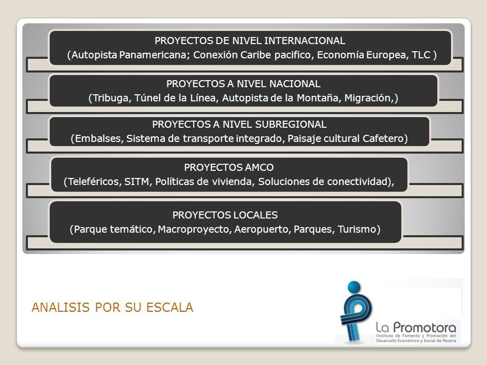 ANALISIS POR SU ESCALA PROYECTOS DE NIVEL INTERNACIONAL (Autopista Panamericana; Conexión Caribe pacifico, Economía Europea, TLC ) PROYECTOS A NIVEL N