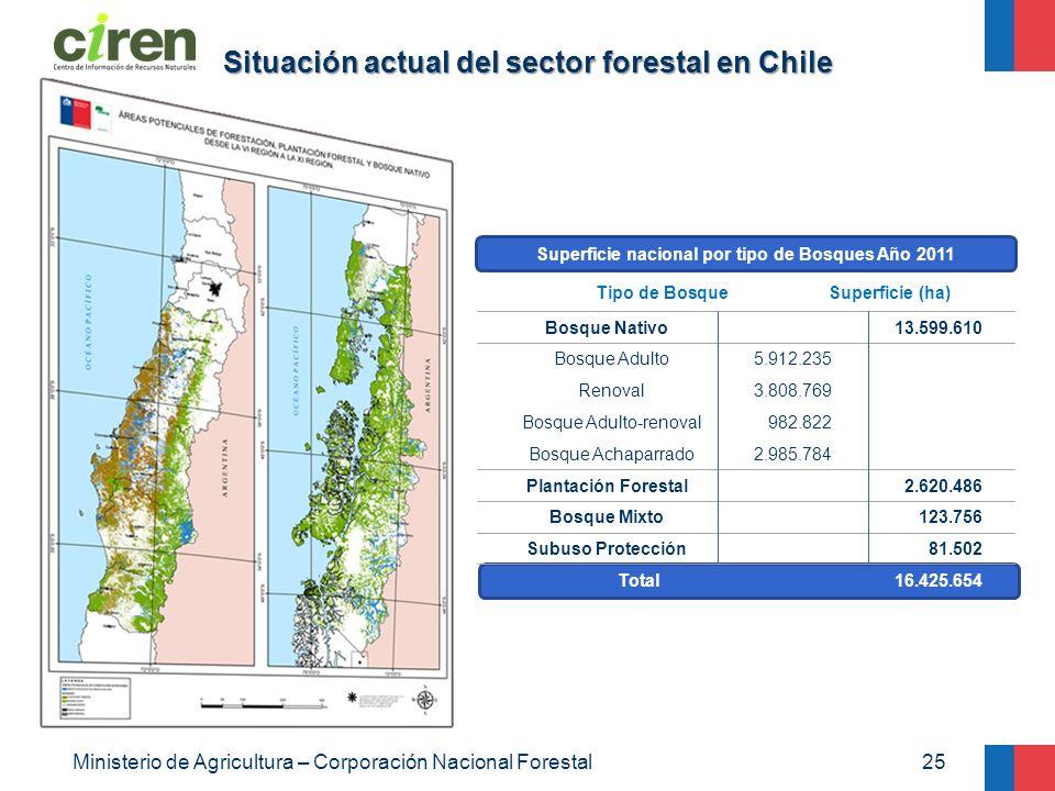 Situación actual del sector forestal en Chile 25Ministerio de Agricultura – Corporación Nacional Forestal Bosque Nativo Bosque Adulto Renoval Bosque A