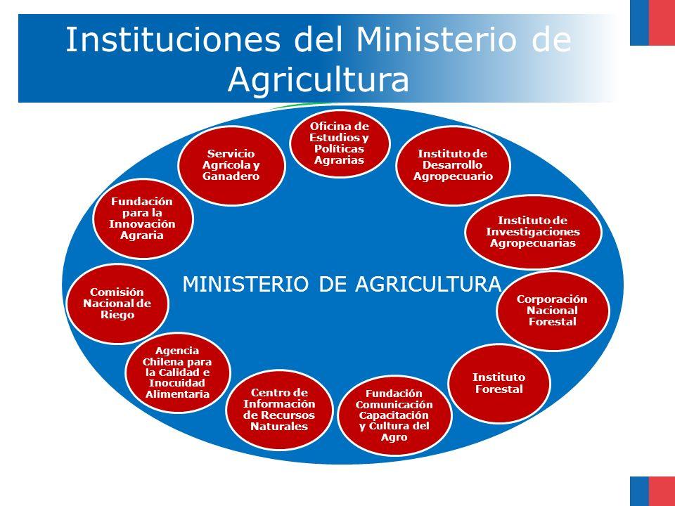 Instituciones del Ministerio de Agricultura MINISTERIO DE AGRICULTURA Oficina de Estudios y Políticas Agrarias Servicio Agrícola y Ganadero Comisión N