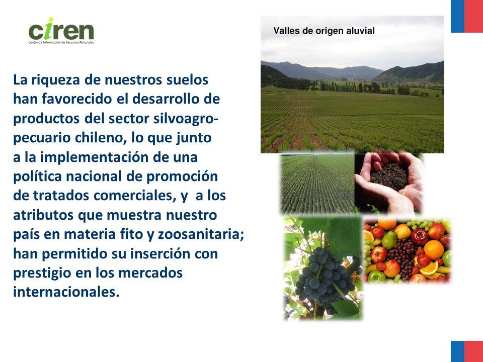 La riqueza de nuestros suelos han favorecido el desarrollo de productos del sector silvoagro- pecuario chileno, lo que junto a la implementación de un
