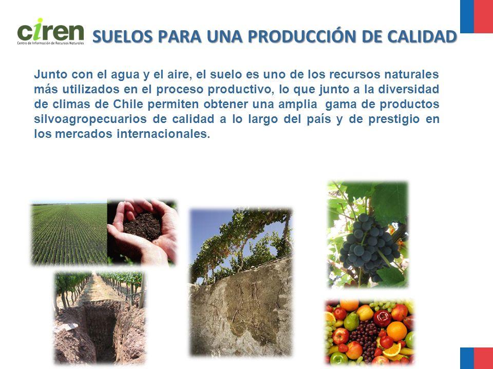 SUELOS PARA UNA PRODUCCIÓN DE CALIDAD Junto con el agua y el aire, el suelo es uno de los recursos naturales más utilizados en el proceso productivo,