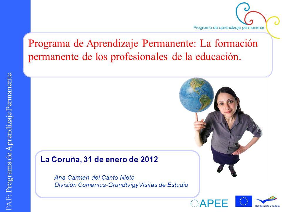 PAP : Programa de Aprendizaje Permanente. Programa de Aprendizaje Permanente: La formación permanente de los profesionales de la educación. La Coruña,
