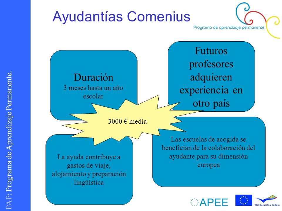 PAP : Programa de Aprendizaje Permanente. Ayudantías Comenius Duración 3 meses hasta un año escolar Futuros profesores adquieren experiencia en otro p