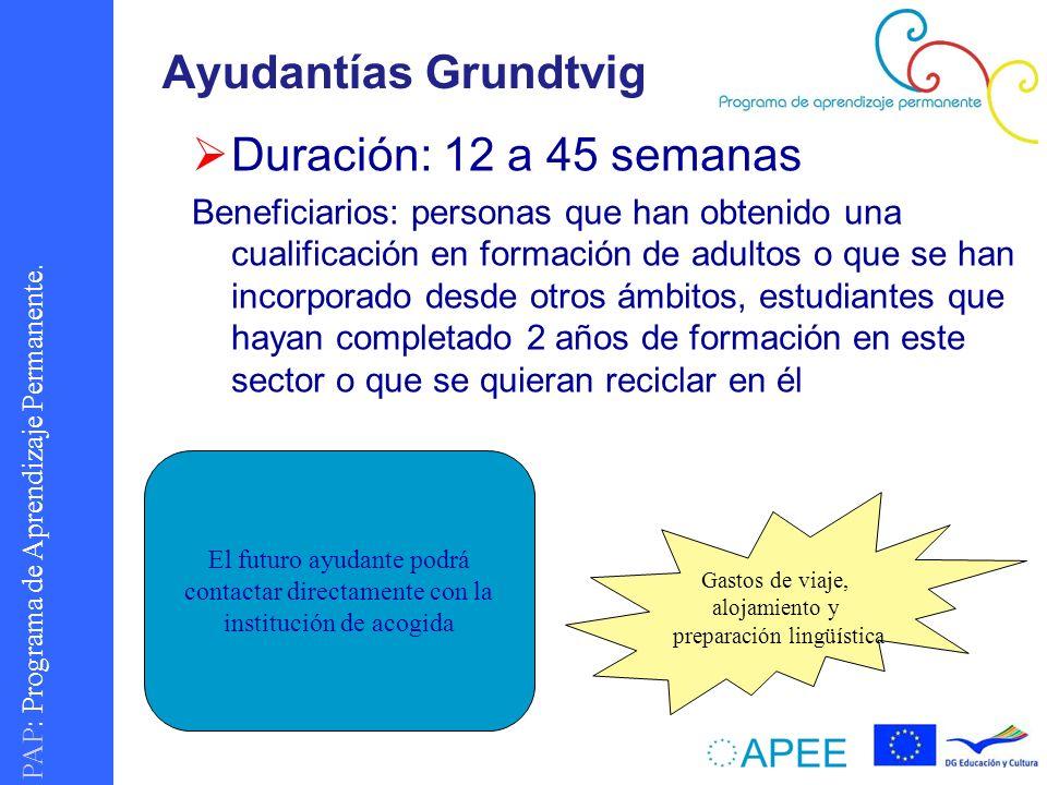PAP : Programa de Aprendizaje Permanente. Ayudantías Grundtvig Duración: 12 a 45 semanas Beneficiarios: personas que han obtenido una cualificación en