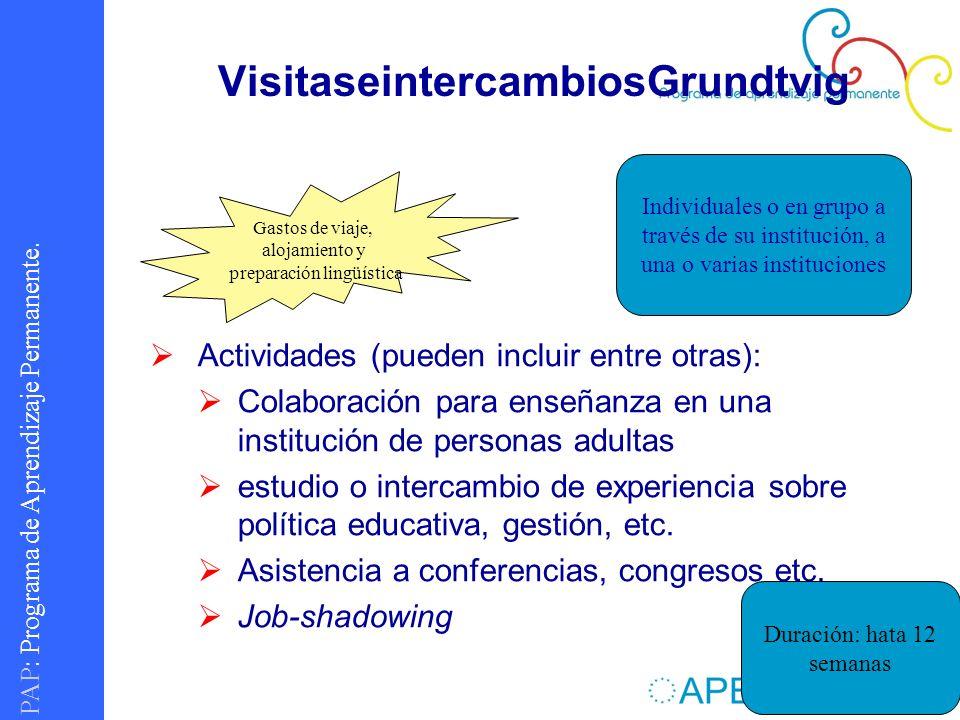 PAP : Programa de Aprendizaje Permanente. VisitaseintercambiosGrundtvig Actividades (pueden incluir entre otras): Colaboración para enseñanza en una i
