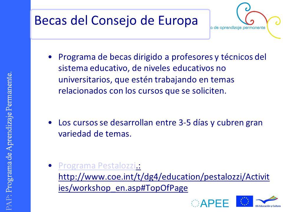 PAP : Programa de Aprendizaje Permanente. Programa de becas dirigido a profesores y técnicos del sistema educativo, de niveles educativos no universit