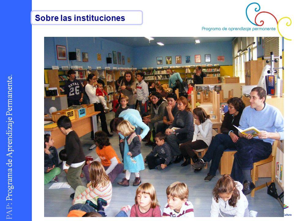PAP : Programa de Aprendizaje Permanente. Sobre las instituciones