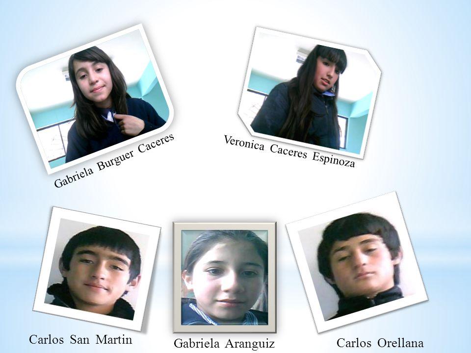 Gabriela Burguer Caceres Veronica Caceres Espinoza Carlos San Martin Gabriela Aranguiz Carlos Orellana