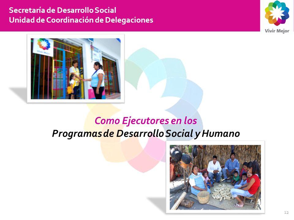 12 Secretaría de Desarrollo Social Unidad de Coordinación de Delegaciones Como Ejecutores en los Programas de Desarrollo Social y Humano