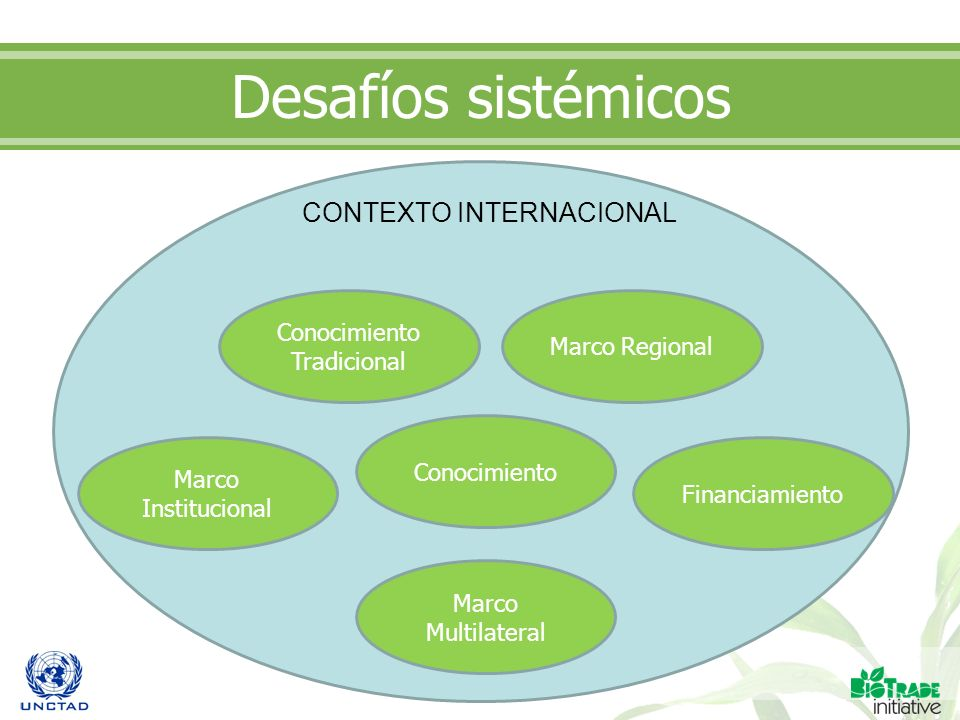 Desafíos sistémicos Conocimiento Tradicional Financiamiento Marco Institucional Marco Regional Marco Multilateral Conocimiento CONTEXTO INTERNACIONAL
