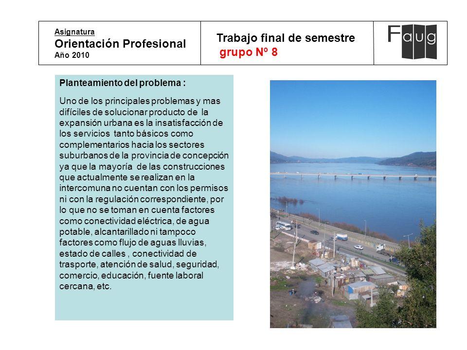 Asignatura Orientación Profesional Año 2010 Trabajo final de semestre grupo Nº 8 Planteamiento del problema : Uno de los principales problemas y mas d