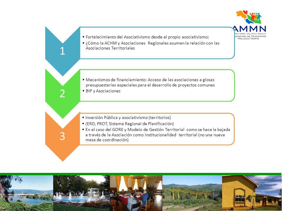 1 Fortalecimiento del Asociativismo desde el propio asociativismo; ¿Cómo la ACHM y Asociaciones Regionales asumen la relación con las Asociaciones Ter
