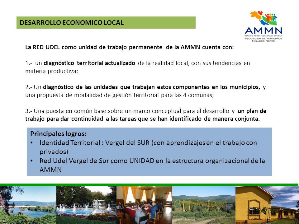 DESARROLLO ECONOMICO LOCAL La RED UDEL como unidad de trabajo permanente de la AMMN cuenta con: 1.- un diagnóstico territorial actualizado de la reali