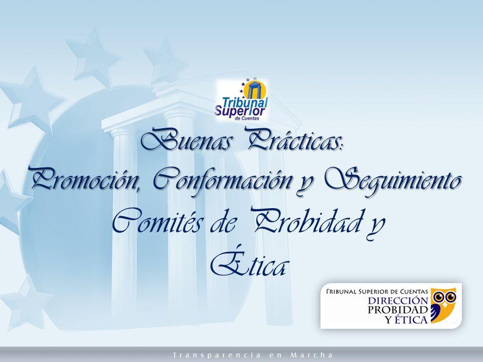 Buenas Prácticas: Promoción, Conformación y Seguimiento Comités de Probidad y Ética