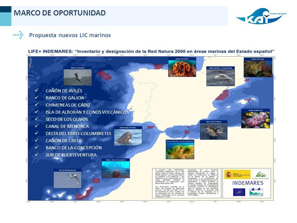 Propuesta nuevos LIC marinos CAÑÓN DE AVILÉS BANCO DE GALICIA CHIMENEAS DE CÁDIZ ISLA DE ALBORÁN Y CONOS VOLCÁNICOS SECO DE LOS OLIVOS CANAL DE MENORCA DELTA DEL EBRO-COLUMBRETES CAÑÓN DE CREUS BANCO DE LA CONCEPCIÓN SUR DE FUERTEVENTURA MARCO DE OPORTUNIDAD