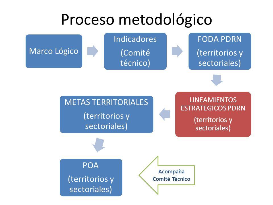 Proceso metodológico Marco Lógico Indicadores (Comité técnico) FODA PDRN (territorios y sectoriales) LINEAMIENTOS ESTRATEGICOS PDRN (territorios y sec