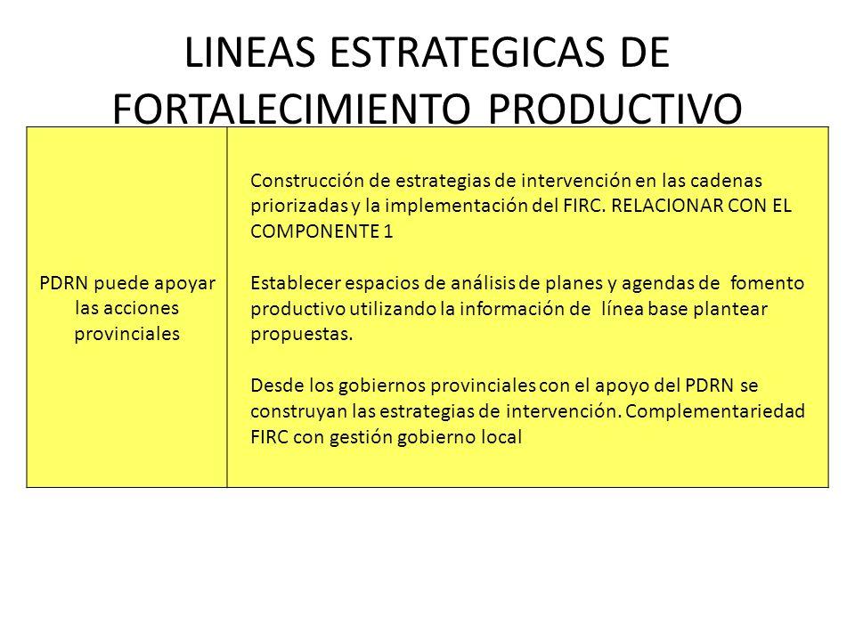 LINEAS ESTRATEGICAS DE FORTALECIMIENTO PRODUCTIVO PDRN puede apoyar las acciones provinciales Construcción de estrategias de intervención en las caden