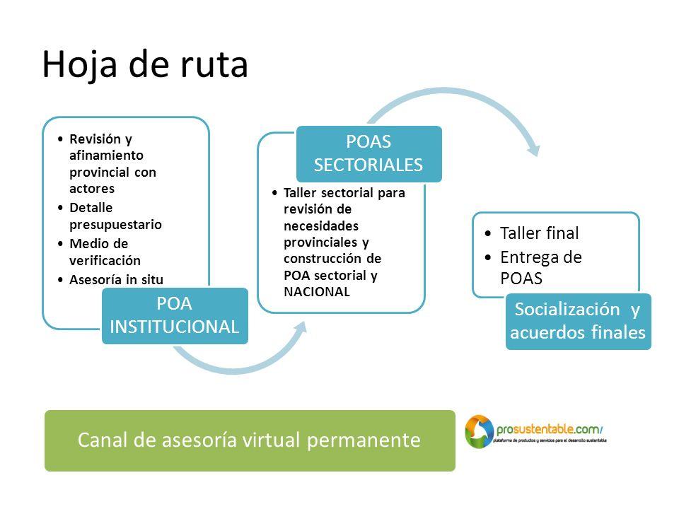 Hoja de ruta Revisión y afinamiento provincial con actores Detalle presupuestario Medio de verificación Asesoría in situ POA INSTITUCIONAL Taller sect
