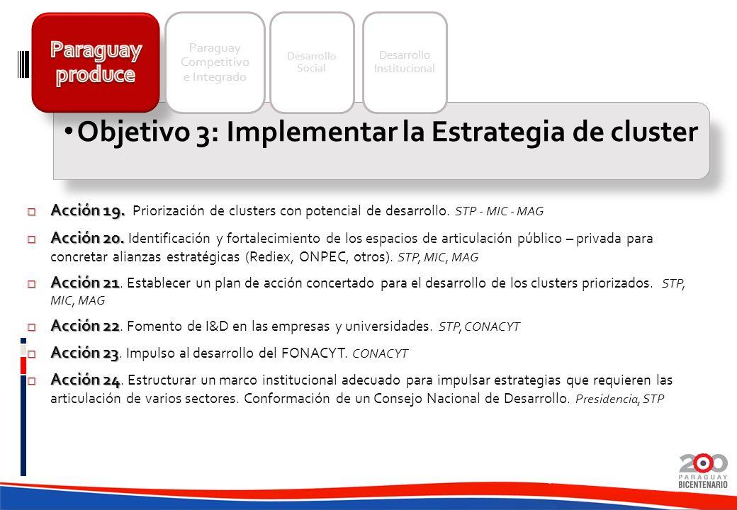 Acción 19. Acción 19. Priorización de clusters con potencial de desarrollo. STP - MIC - MAG Acción 20. Acción 20. Identificación y fortalecimiento de