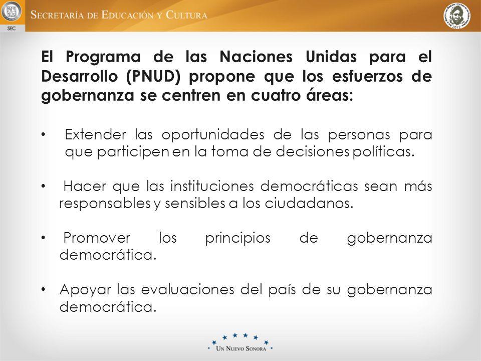 El Programa de las Naciones Unidas para el Desarrollo (PNUD) propone que los esfuerzos de gobernanza se centren en cuatro áreas: Extender las oportuni