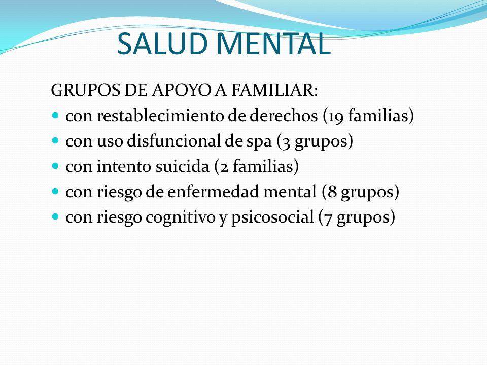 SALUD MENTAL GRUPOS DE APOYO A FAMILIAR: con restablecimiento de derechos (19 familias) con uso disfuncional de spa (3 grupos) con intento suicida (2