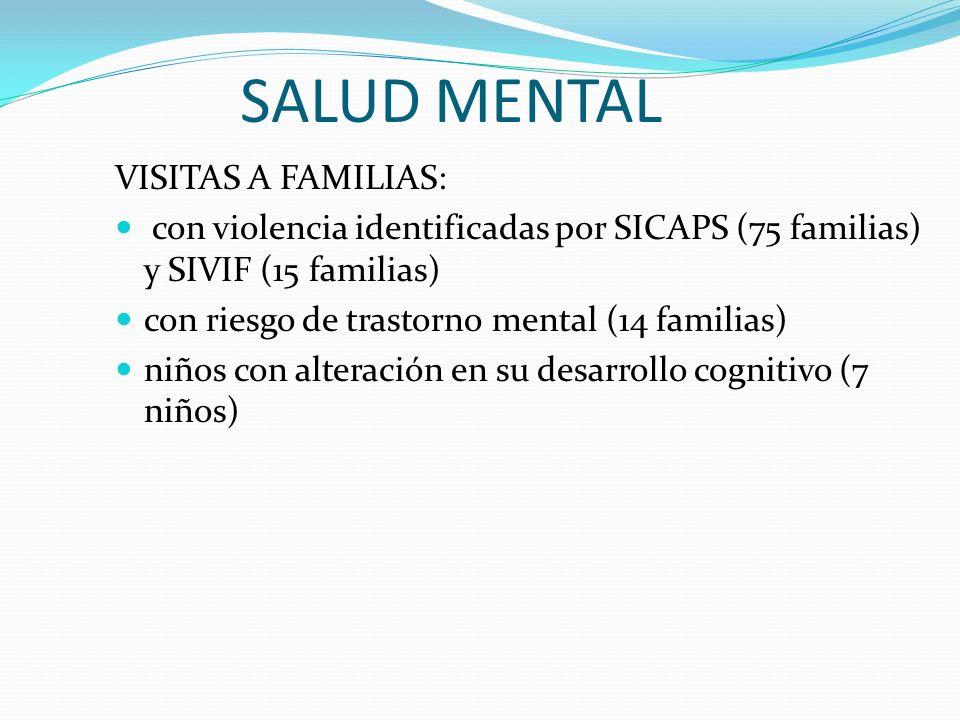 SALUD MENTAL VISITAS A FAMILIAS: con violencia identificadas por SICAPS (75 familias) y SIVIF (15 familias) con riesgo de trastorno mental (14 familia